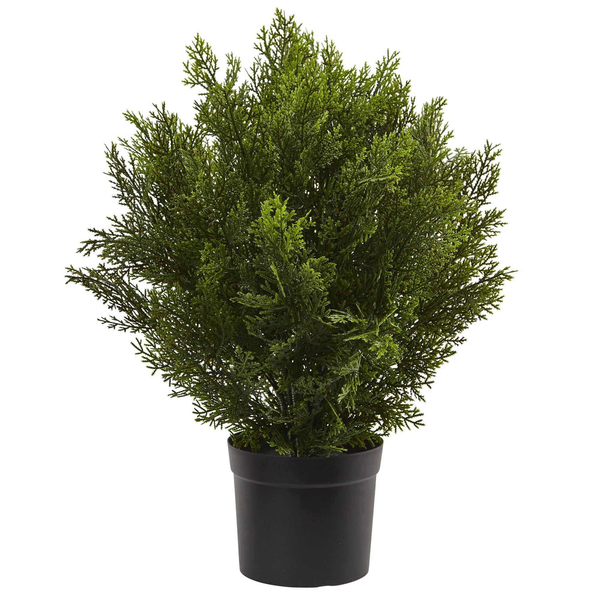 Nearly Natural 6880 2' Cedar Artificial Bush (Indoor/Outdoor)
