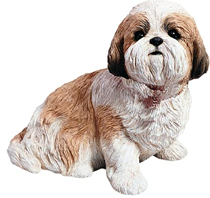 Amazoncom Sandicast Life Size Gold And White Shih Tzu Sculpture