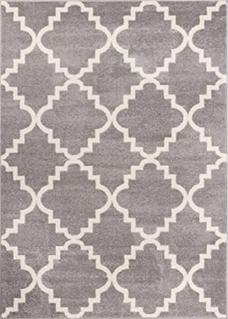 Amazon Com Grey Silver 3x5 3 3 X 4 7 Area Rug Trellis