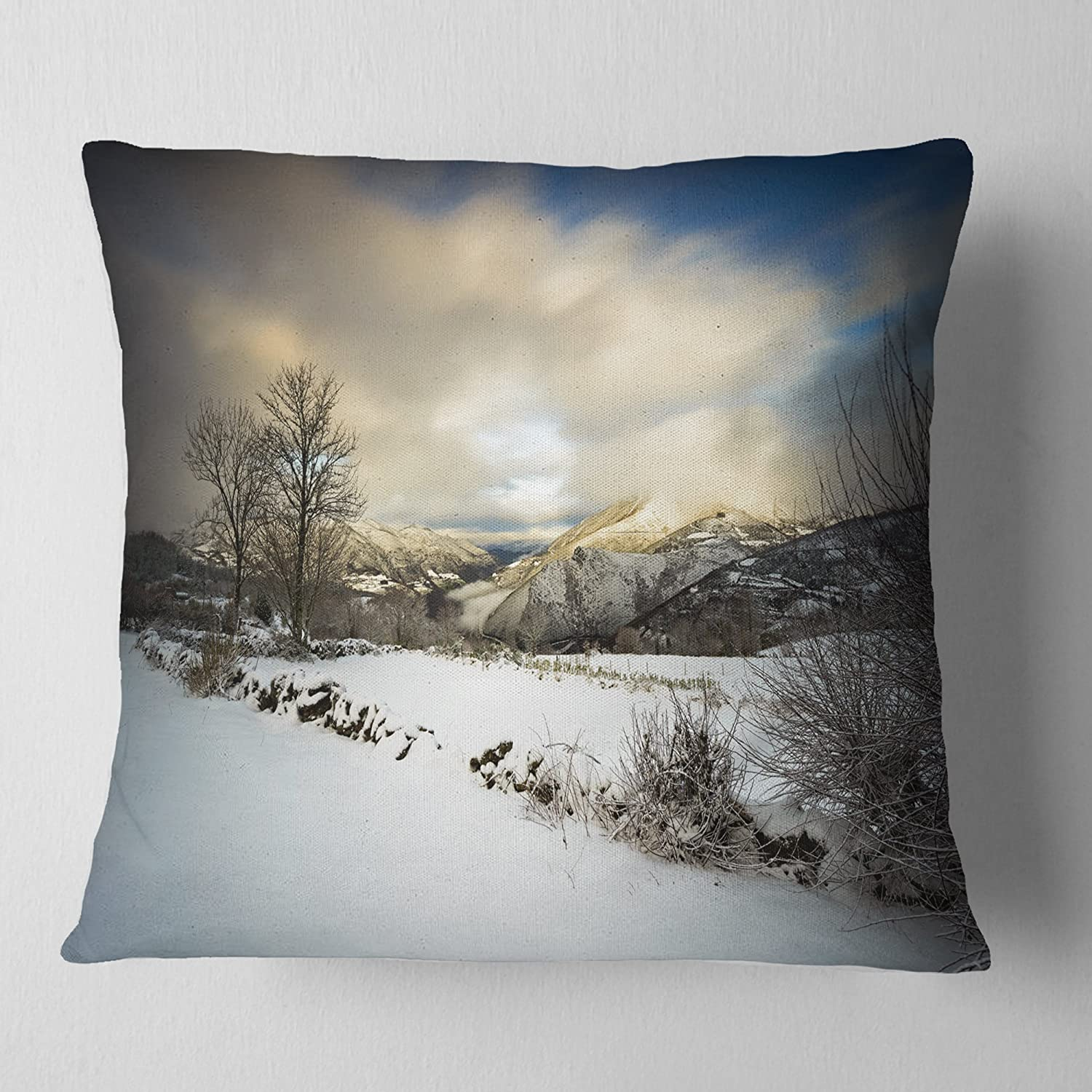 ArtVerse Katelyn Smith 26 x 26 Spun Polyester Double Sided Print with Concealed Zipper /& Insert Nevada Watercolor Pillow
