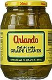 Orlando California Grapes Leaves, 16 Ounce
