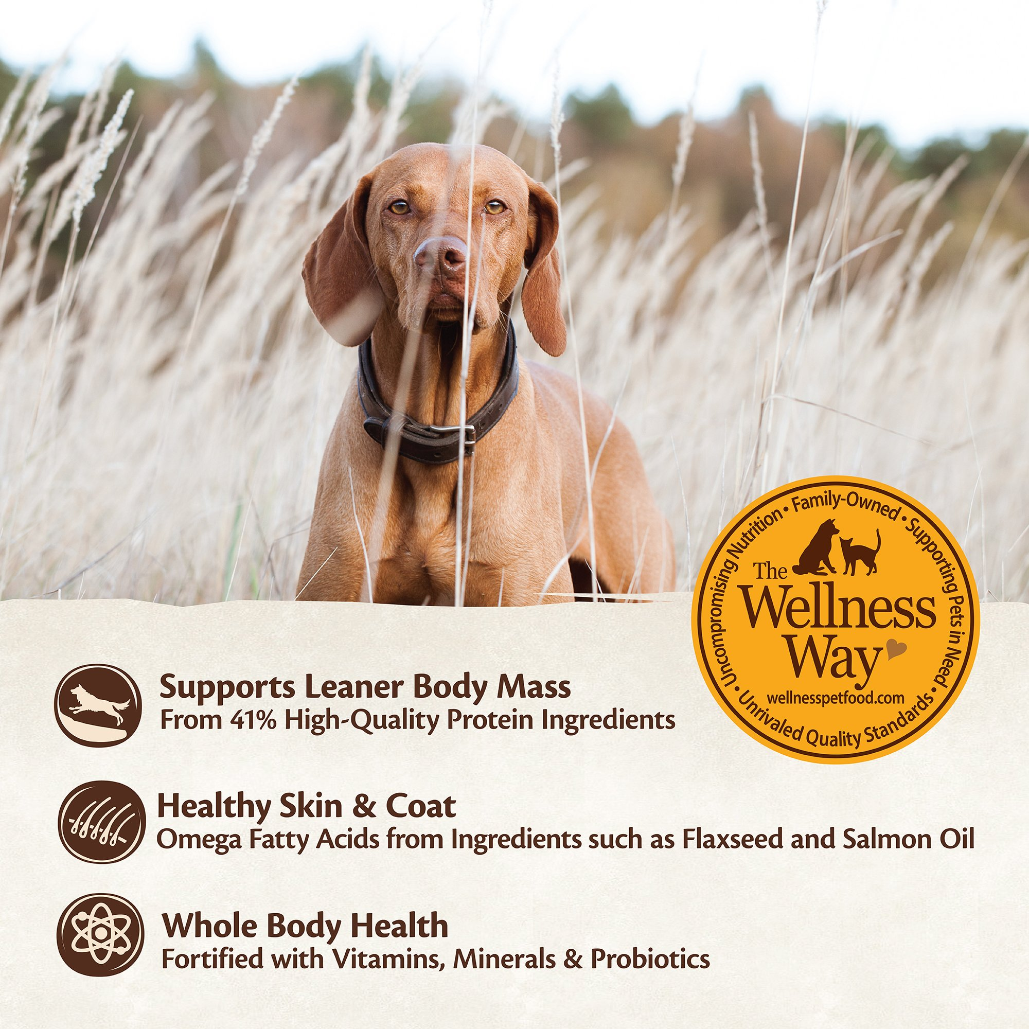 Wellness CORE Natural Grain Free Dry Dog Food, Puppy, 26-Pound Bag by WELLNESS CORE (Image #5)