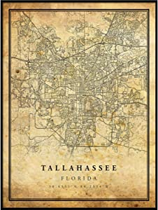 Tallahassee map Vintage Style Poster Print | Old City Artwork Prints | Antique Style Home Decor | Florida Wall Art Gift | Vintage map Decor 8.5x11