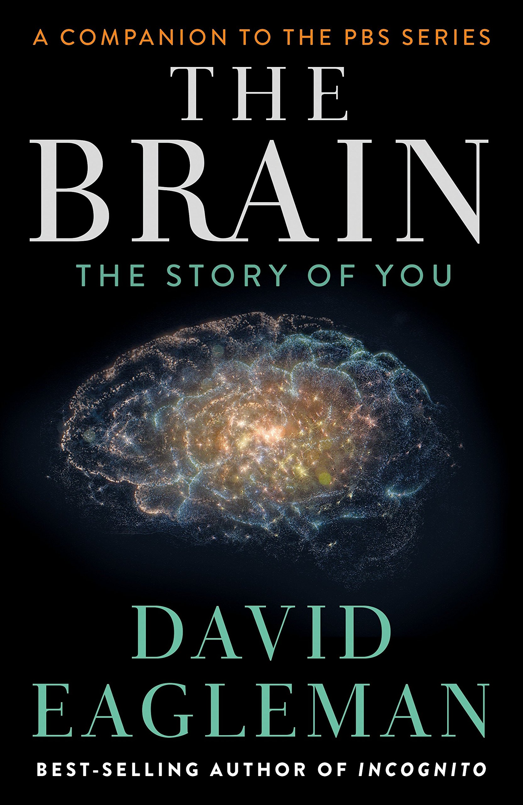 Buy The Brain: The Story of You Book Online at Low Prices in India | The  Brain: The Story of You Reviews & Ratings - Amazon.in