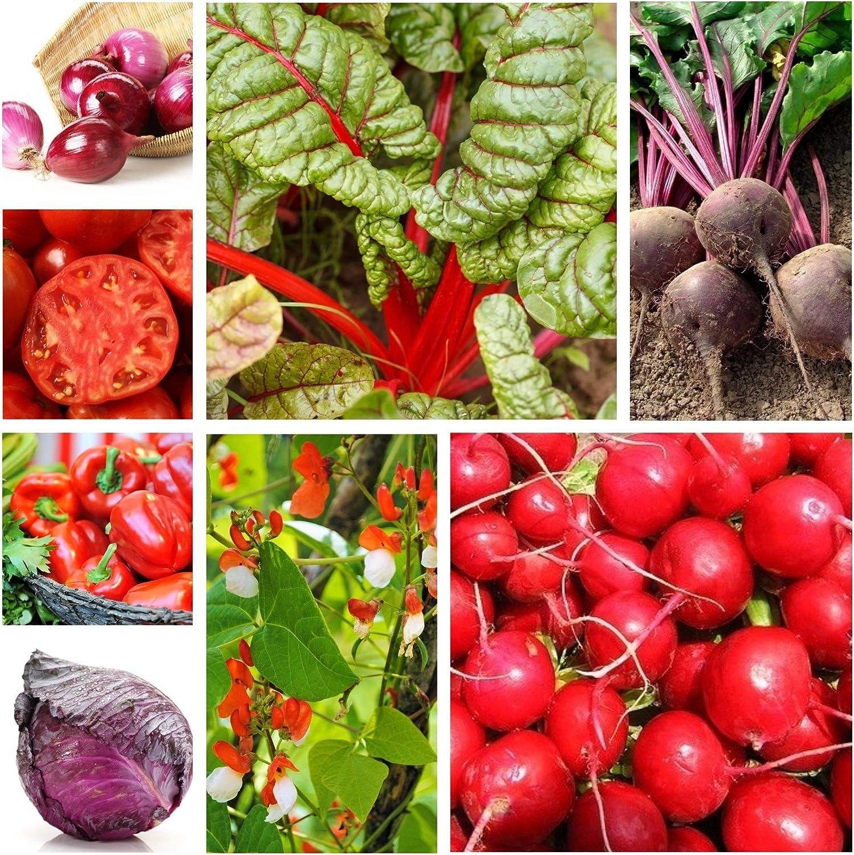 Hortalizas rojas - semillas de 8 especies: Amazon.es: Jardín