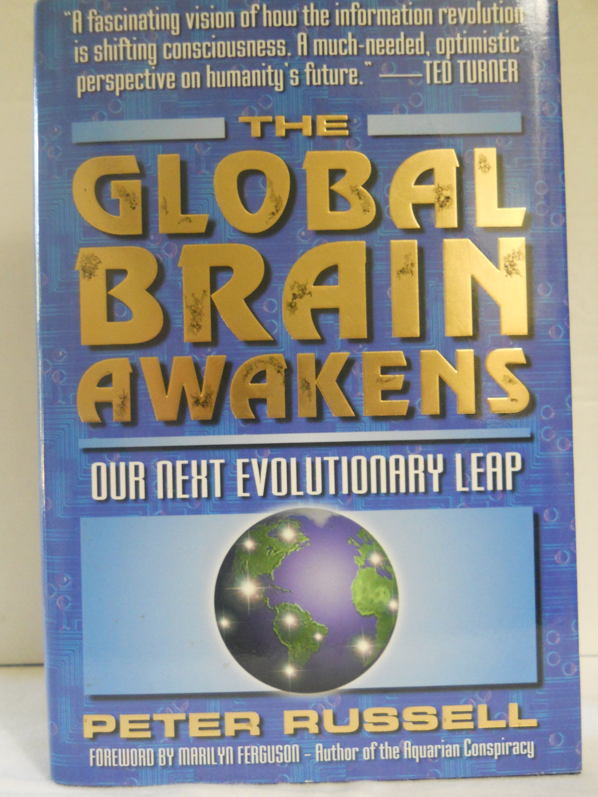 The Global Brain Awakens: Our Next Evolutionary Leap: Peter Russell:  9781885261052: Amazon: Books