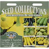 Mr. Fothergill's 14141 Courgettes and Summer Squashes Seed Collection 6 Sachet