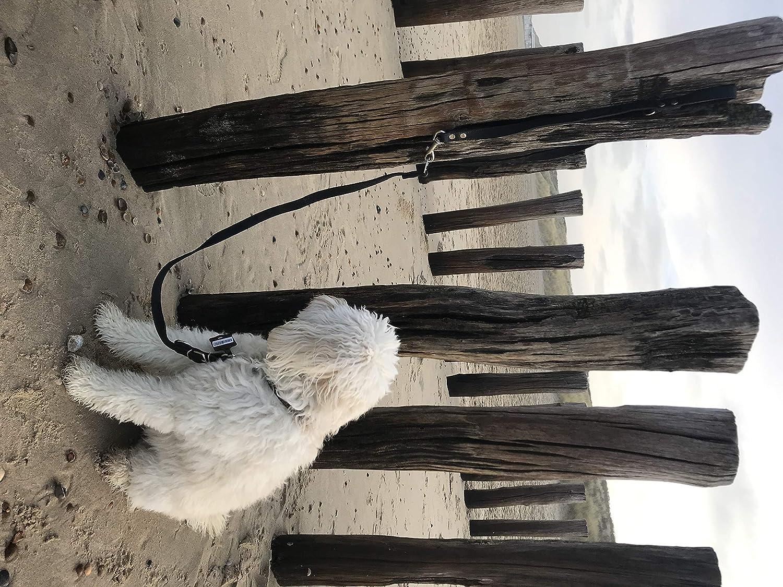20 mm//220 cm HOGACA regolabile Guinzaglio per cani in vera pelle 925 per cani di grandi dimensioni XXL