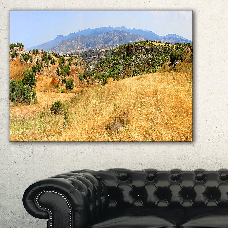 Amazon.com: Cyprus Landscape Panoramic View Landscape Canvas Art ...