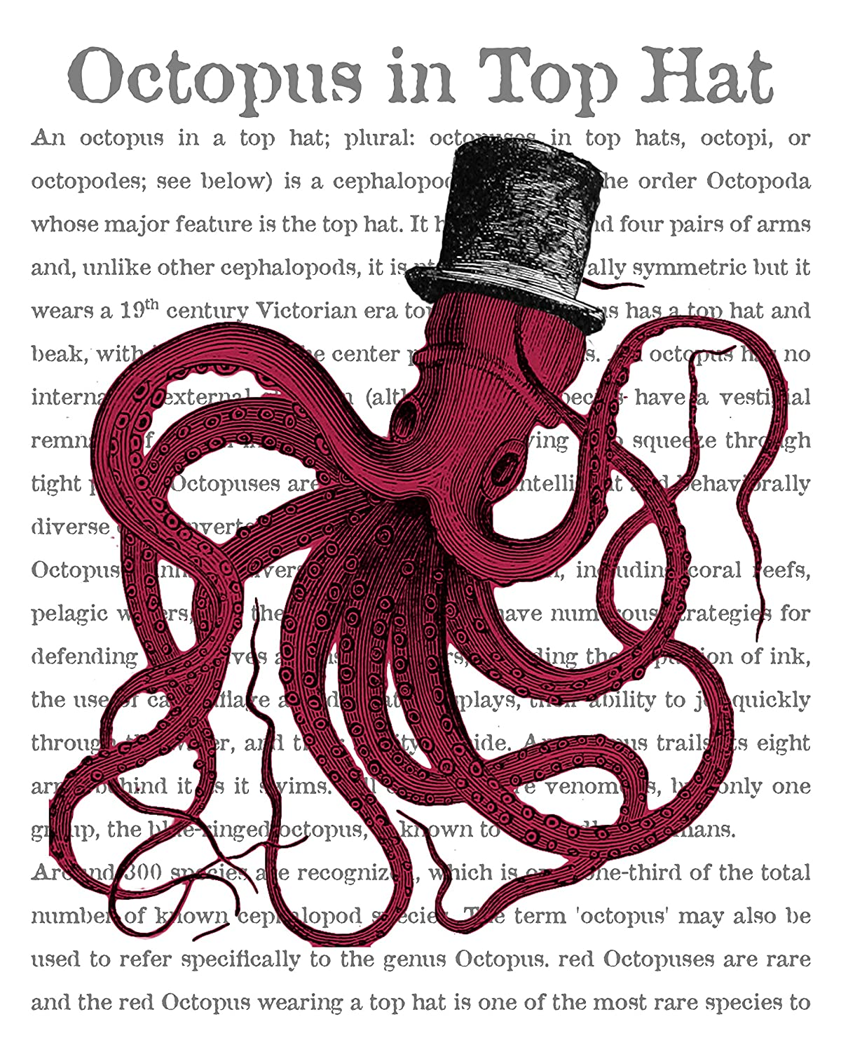 Amazon.com : 8x10 Fine Art Print of a Red Octopus in a Top Hat, Octopus Decor, Dictionary Print, Victorian Hat Giclee Print - 8x10 : Everything Else