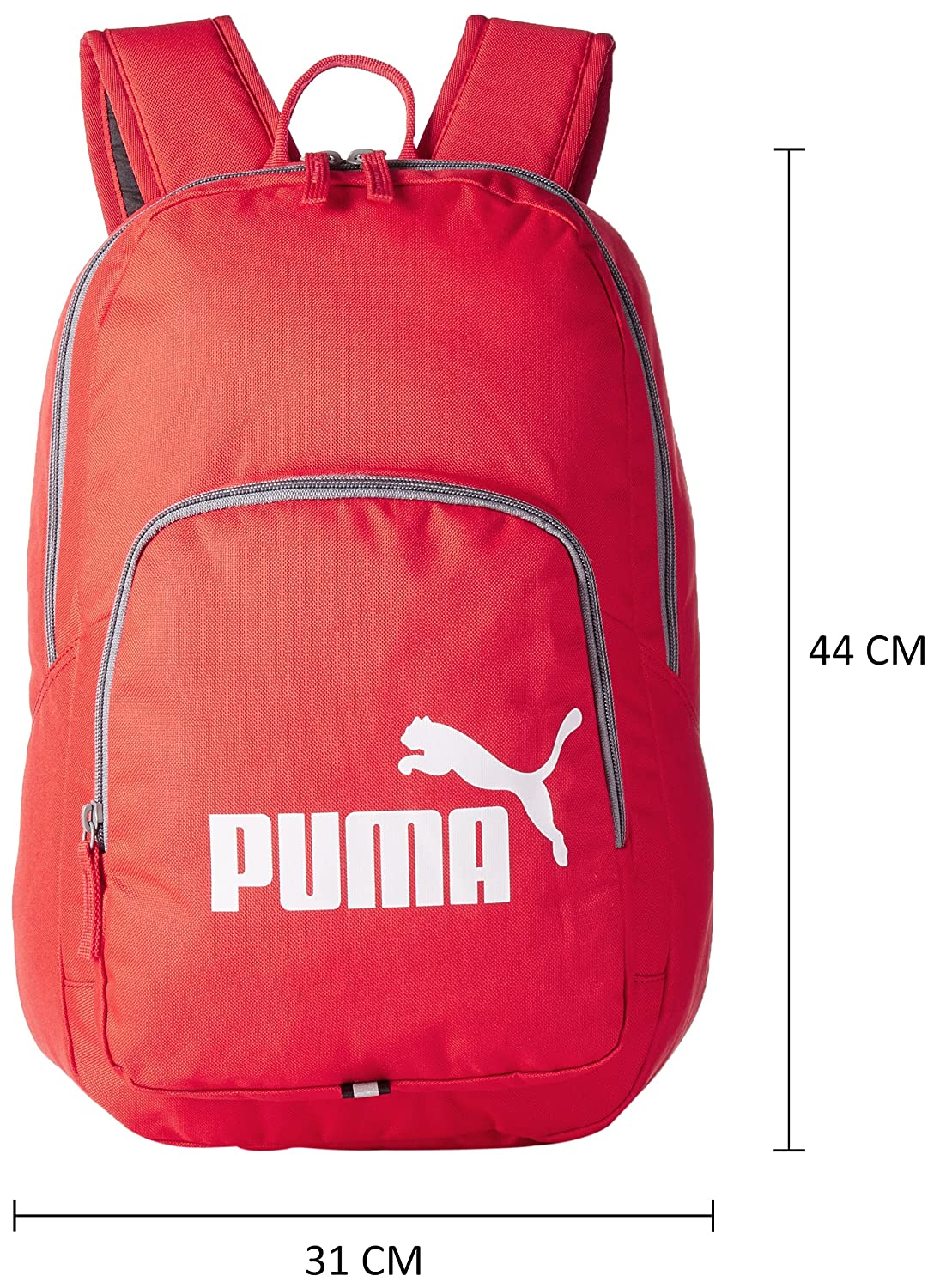 Phase Backpack 21 Ltrs Red Casual Backpack (7358919)  Amazon.in  Bags 24359a74b830d