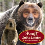 Banff Me