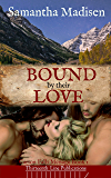 Bound by their Love (Carson Falls Menage Book 1)