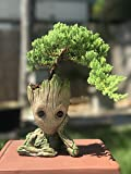 Bonsai Tree Pot Baby Groot (Thinking Groot) Succulent pot - Cactus pot- Pen Holder- Make up Brush holder -Great Quality and Extremely Detailed -Durable Resin- Won't Loose Color Due To Rain, Snow, Sun