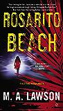 Rosarito Beach: A Kay Hamilton Novel (Agent Kay Hamilton Series Book 1)