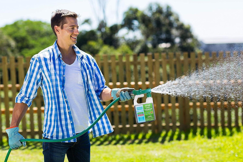 Avanzada 16 – 4-8 equilibrado npk- Spray fertilizer- primavera y verano concentrado líquido césped alimentos naturales – cualquier hierba soluciones simples césped, de tipo 32-ounce- verde, crecer, crecimiento de la raíz, salud