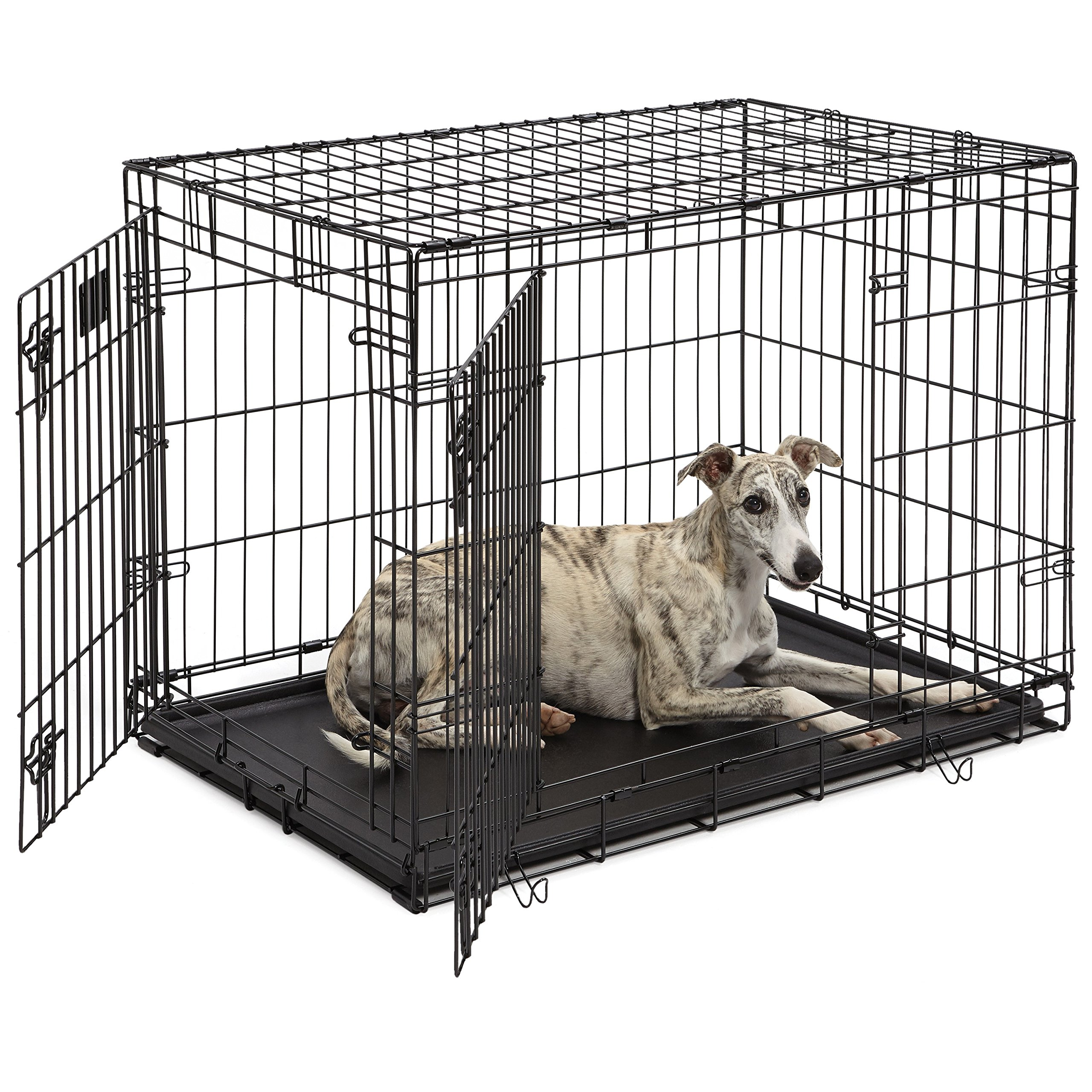 Dog Crate | MidWest Life Stages 36'' Double Door Folding Metal Dog Crate | Divider Panel, Floor Protecting Feet, Leak-Proof Dog Tray | 36L x 24W x 27H Inches, Intermediate Dog Breed