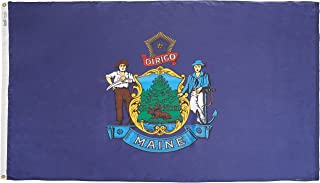 product image for Annin Flagmakers Model 142270 Maine State Flag 4x6 ft. Nylon SolarGuard Nyl-Glo 100% Made in USA to Official State Design Specifications.