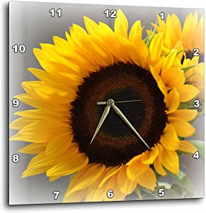 3dRose dpp_37531_3 Yellow Sunflower Delight-Autumn Flowers-Photography Wall Clock, 15 by 15-Inch