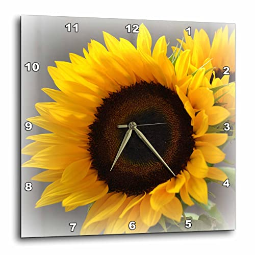 3dRose DPP_37531_2 Yellow Sunflower Delight- Autumn Flowers- Photography-Wall Clock, 13 by 13-Inch