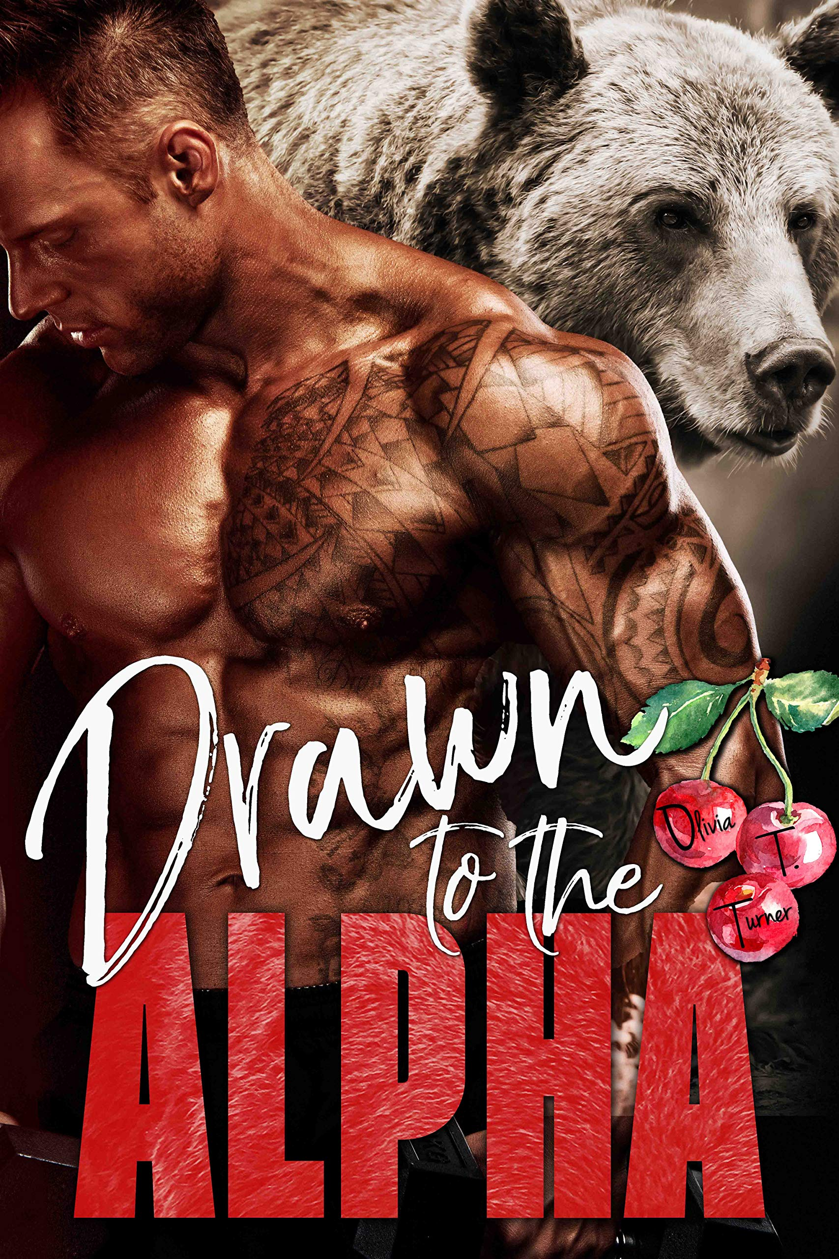 Drawn To The Alpha  Alphas In Heat Book 2   English Edition