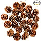 Coobey 24 Pieces 3.5-6cm Christmas Pine Cones With String Natural Pine Cones Pendant Crafts Ornament for Christmas Tree Decoration Gift Tag