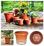 "Bloem Terra Pot Planter 10"" Living Green"