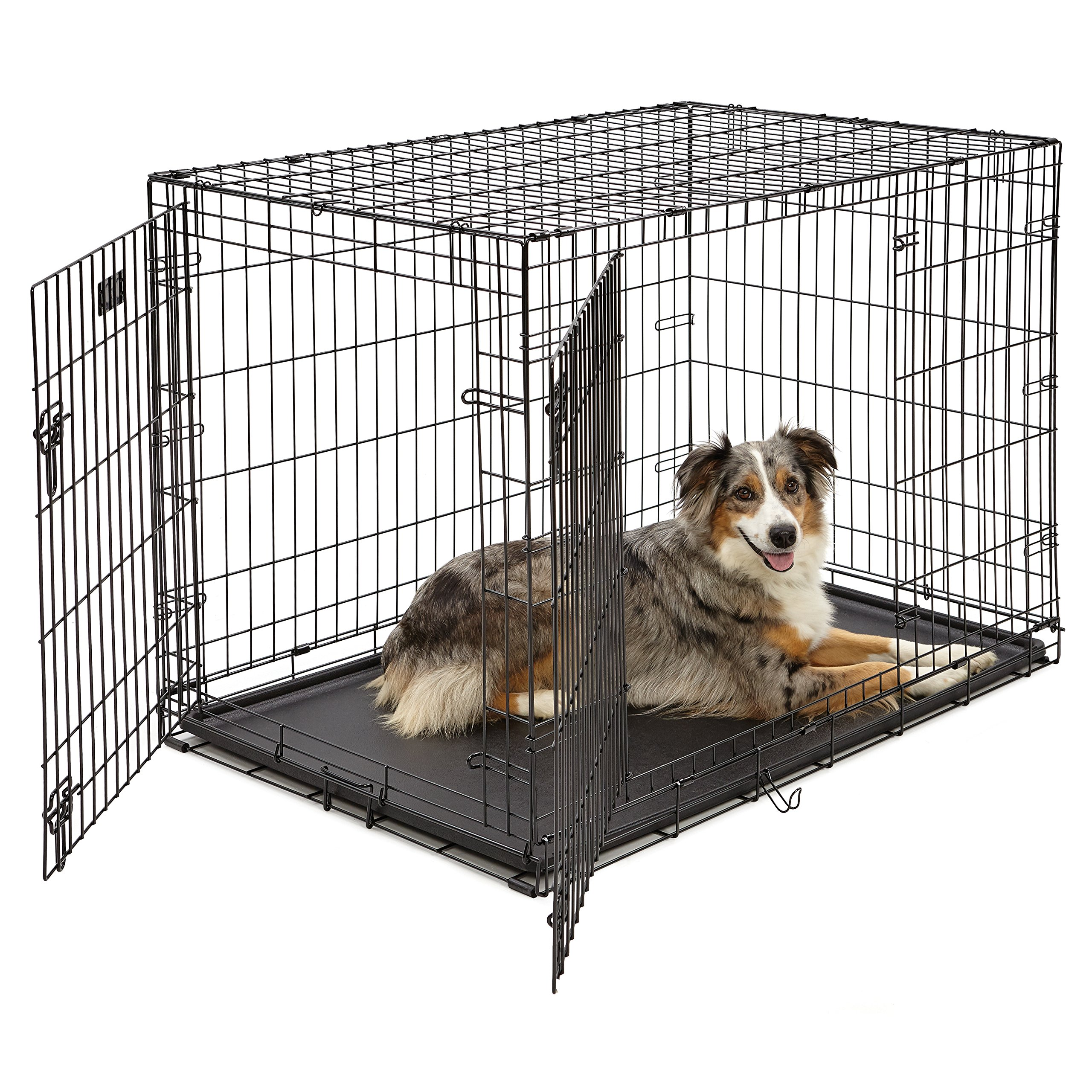 Large Dog Crate | MidWest iCrate Double Door Folding Metal Dog Crate | Divider Panel, Floor Protecting Feet, Leak-Proof Dog Tray | 42L x 28W x 30H Inches, Large Dog, Black by MidWest Homes for Pets