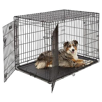 Best Wire Dog Crate