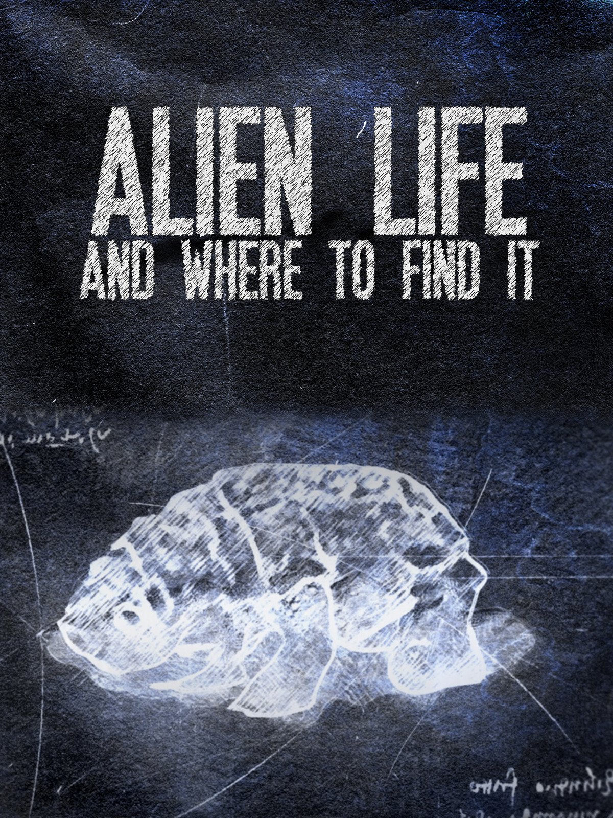 Alien Life & Where To Find It on Amazon Prime Video UK