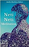 Neti-Neti Meditation (English Edition)