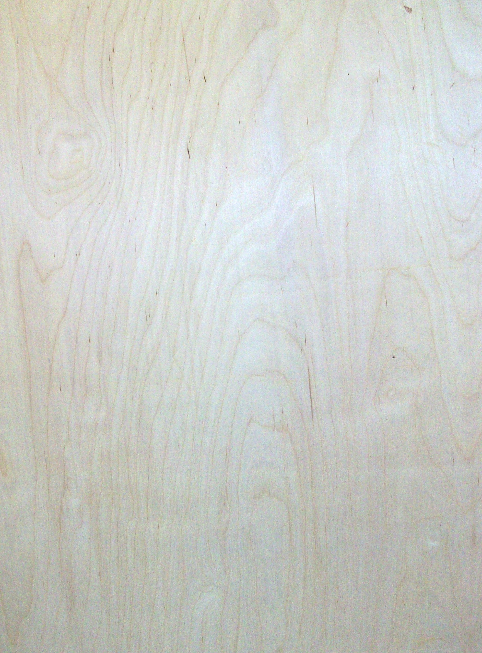 1/8'' Baltic Birch Plywood 20'' X 30'' 2-pack by CAPITOL CITY LUMBER
