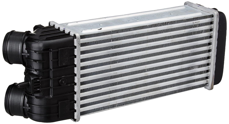 Nissens 96593 Compartimentos de Motor