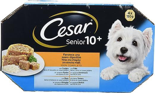 Multipack de 4 tarrinas de 150g para perros senior de +10 años ...