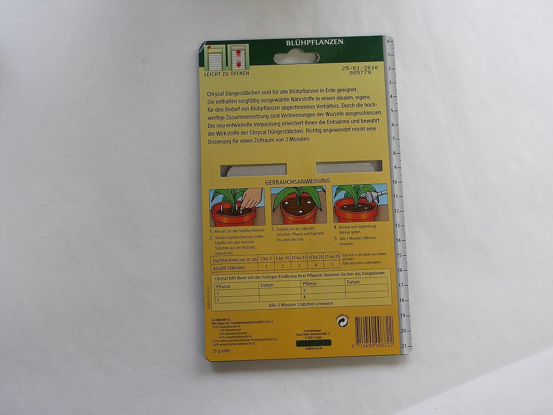 ANPHSIN 100 pi/èces 3Grands Pots de Tourbe de Semences de Plantes Plateaux de Germination de Semences 100/% Ecologique et Biod/égradable avec Bonus 50 marqueurs de Plantes en Plastique