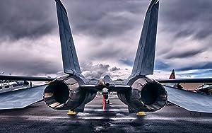 Military Grumman F-14 Tomcat - 24X36 Poster
