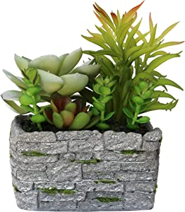 TABOR TOOLS Artificial Succulent Plant with Pot, Assorted Decorative Faux Succulent, Potted Fake Cactus, Cacti Plants with Small Planter. BF1189. (Cement Square Brick Pot)