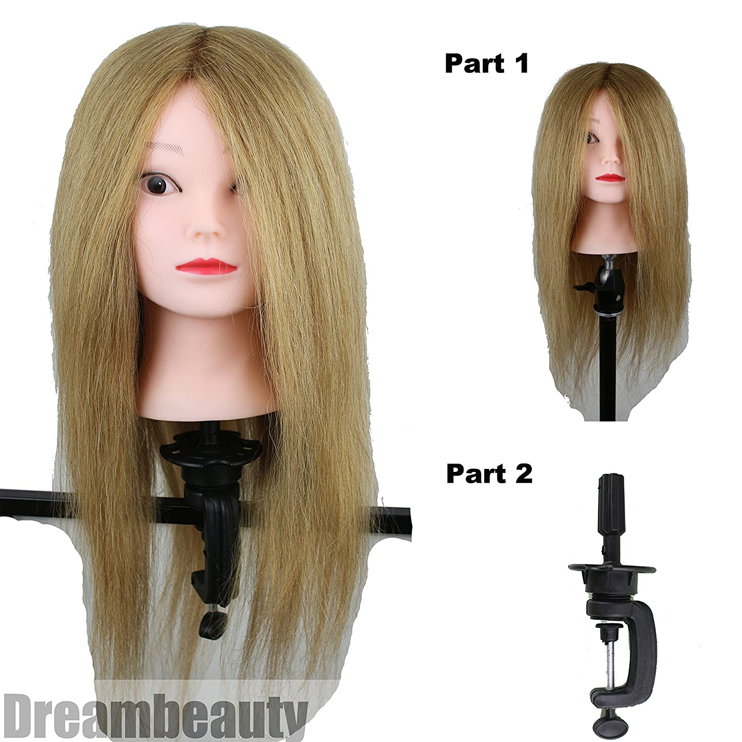 Dreambeauty Hairdressing Training Head 100% Human Hair Blonde Color Mannequin Head for Training and Exams with Table Clamp Qingdao Feiyang Hair Co. Ltd
