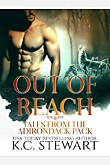 Out of Reach: Tales from the Adirondack Pack Kindle Edition