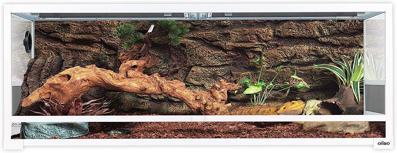 Oiibo 67 Gallon Reptiles Premium White Knock Down Glass Terrarium, Sliding Door with Screen Ventilation Habitat 48