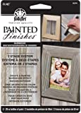 FolkArt Painted Finishes Art Paint Set (2-Ounce), 5074 Barnwood Tint/Barnwood Wax Carded