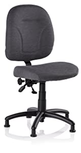 Reliable SewErgo 200SE Ergonomic Task Chair with Adjustable Back