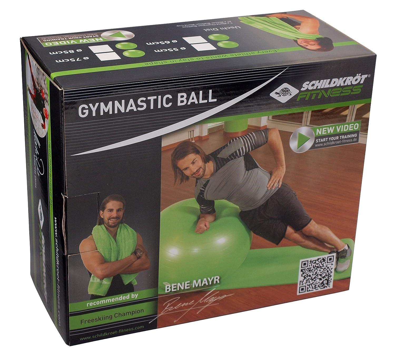 Schildkr/öt Fitness Gymnastikball verschiedene Gr/ö/ßen w/ählbar phthalatfrei 960055-960058 mit Ballpumpe schwere Anti Burst Qualit/ät bis 120kg 55cm//65cm//75cm//85cm Gr/ün