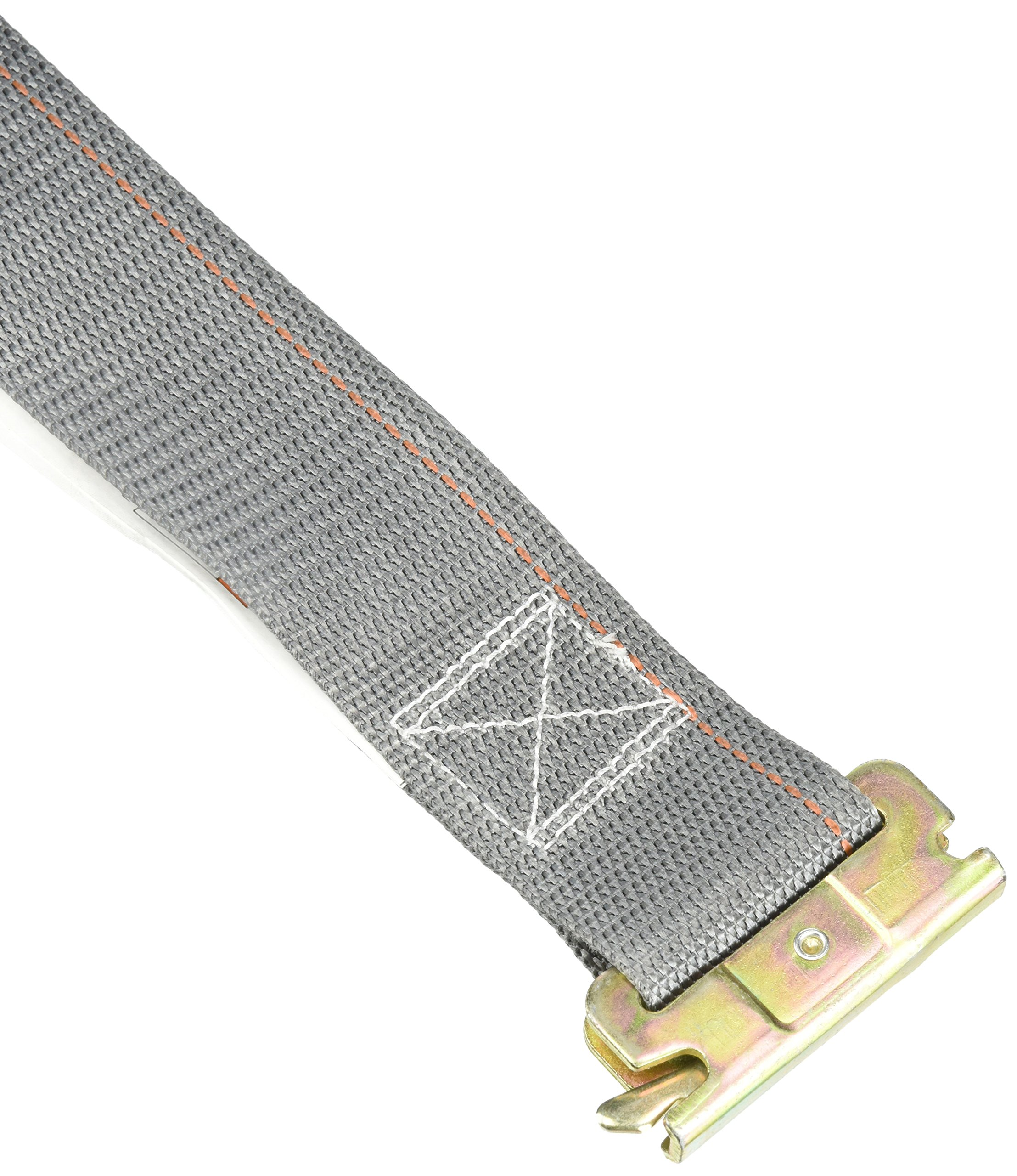 Logistic Cam Buckle Strap, 16ftx2In, 835lb