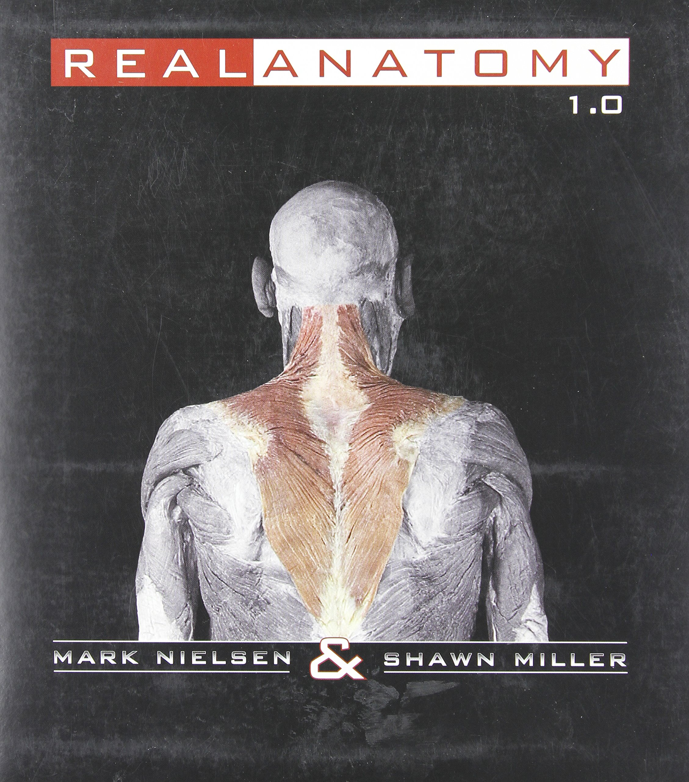Buy Real Anatomy Software DVD Book Online at Low Prices in India ...