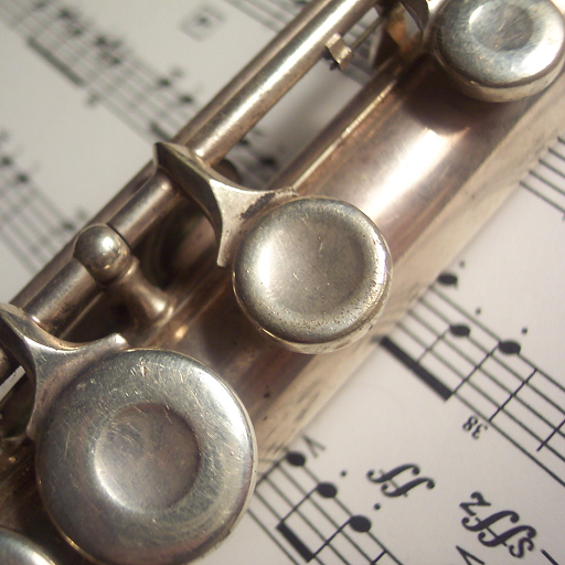 - Flute Lessons For Beginners