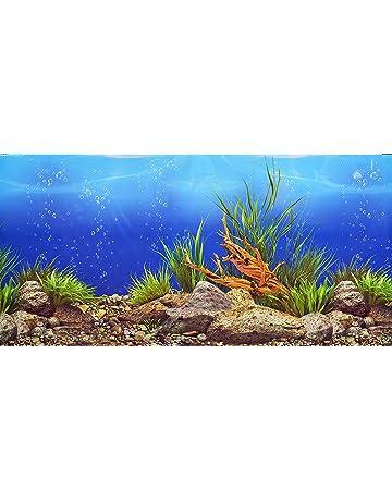 Amazon Fr Decors Pour Fond D Aquarium