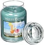 Amazon Price History for:Yankee Candle Company Bahama Breeze Large Jar Candle
