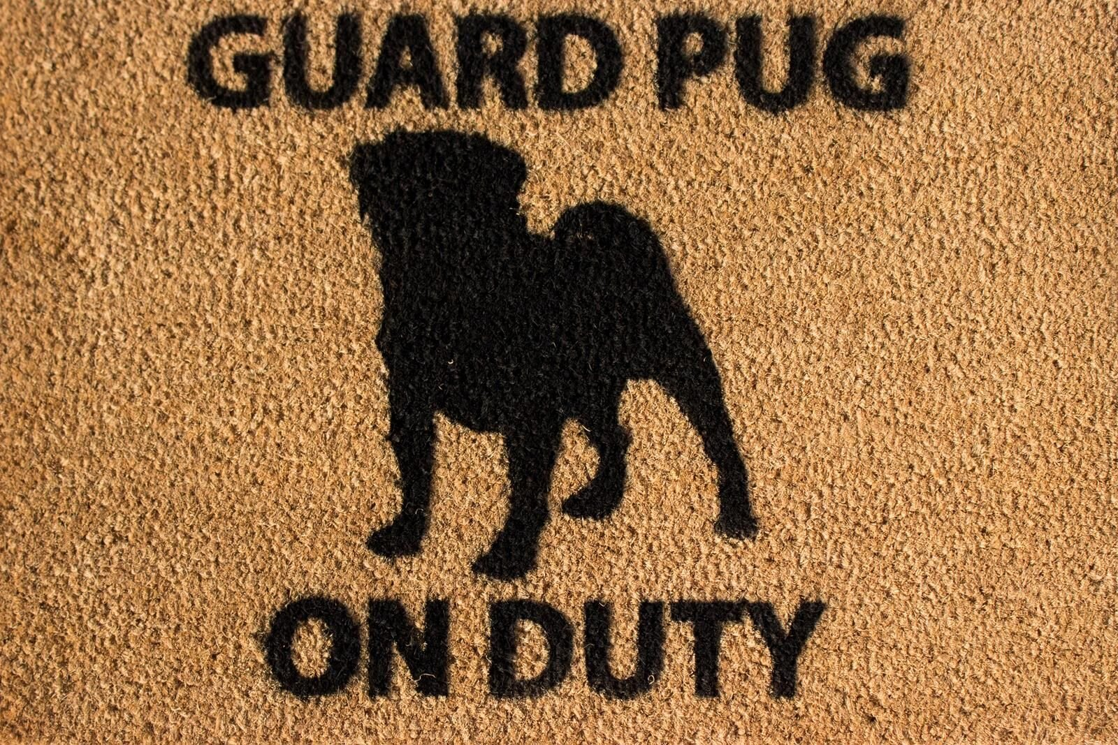 CKB Ltd Pug Novelty Doormat Unique Doormats Front/Back Funny Door Mats Made With A Non-Slip Pvc Backing - Natural Coir - Indoor & Outdoor