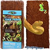 Fernwood Vivarium and Terrarium Background Panels- Made from New Zealand Tree Fern   Natural and Fibrous   for Reptile Tank Backgrounds and Vivarium Backgrounds  2 Pack